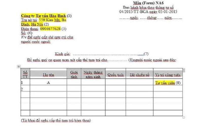 Hướng dẫn viết mẫu NA6